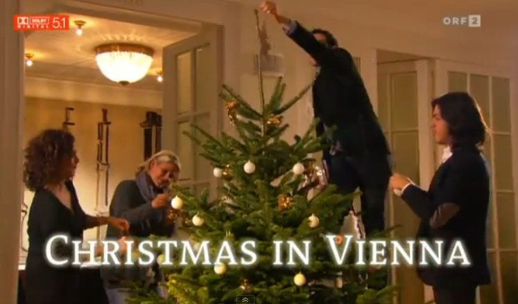 concierto navidad viena 2013
