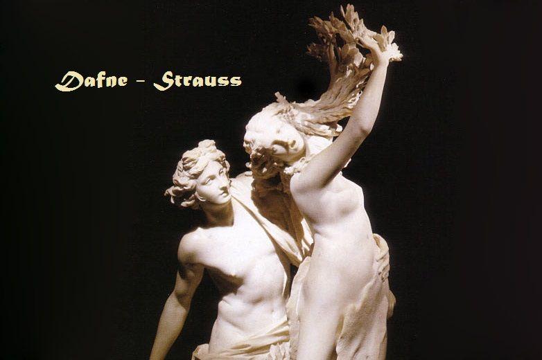Dafne Strauss