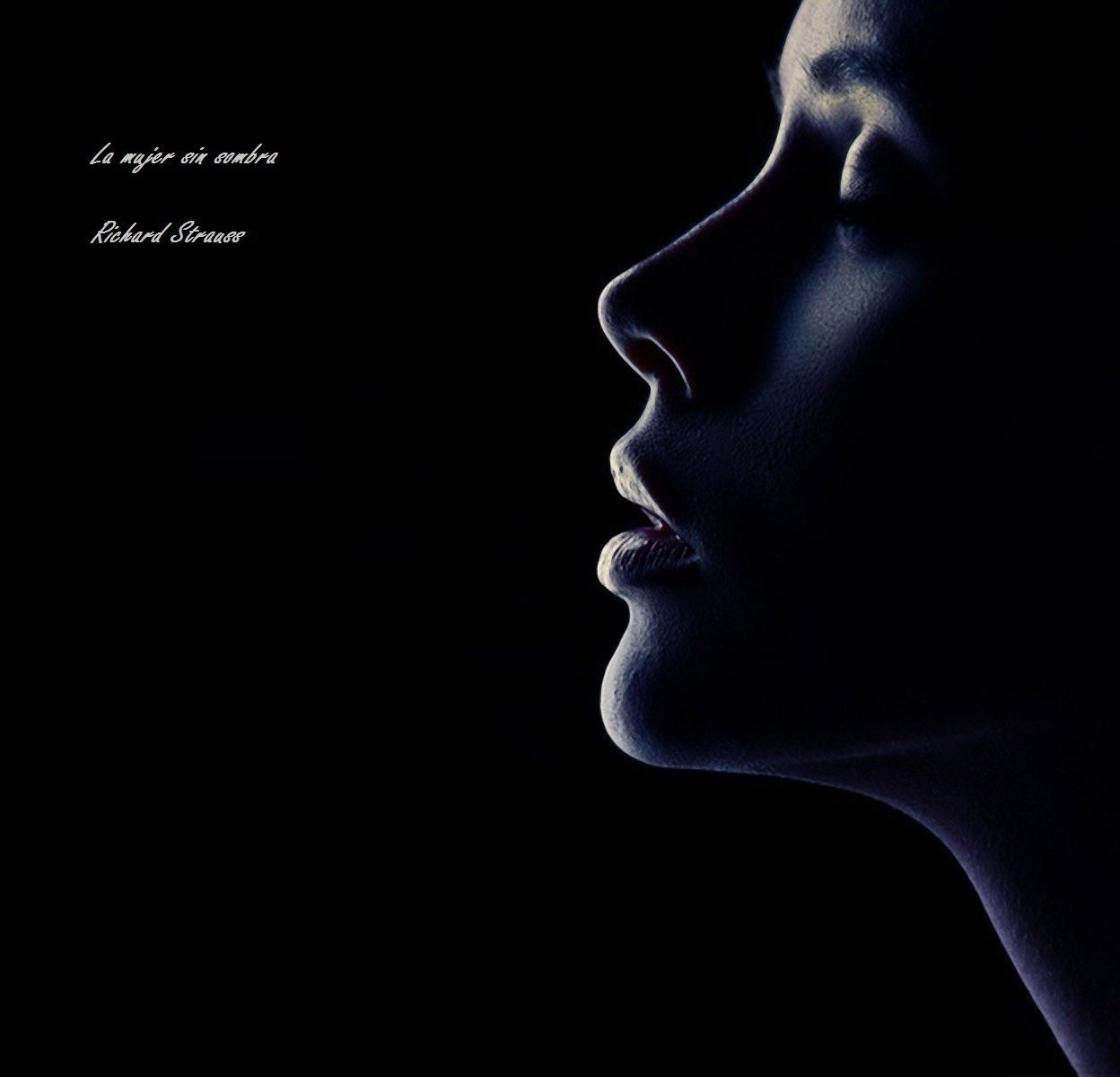la mujer sin sombra strauss